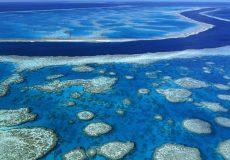 avstralia-reef-001